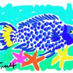 Bahama Blue Parrotfish