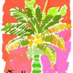 Palm Beach Coco Palm